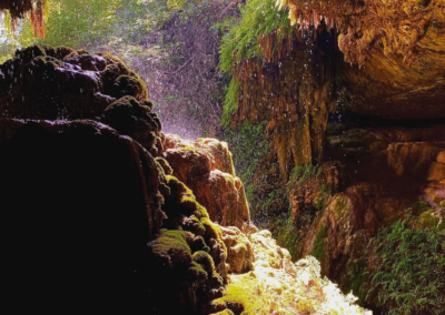 West Cave Discovery